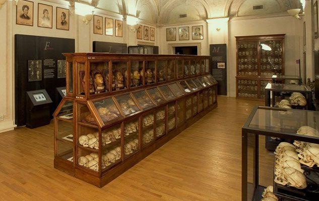 """Il Museo di Antropologia Criminale """"Cesare Lombroso"""" di Torino"""