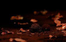 cioccolaterie-torino