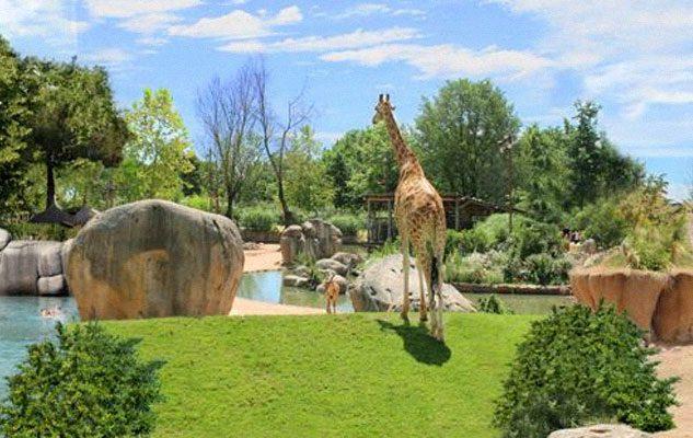 Lo Zoom di Torino: affascinante giardino naturalistico per tutta la famiglia