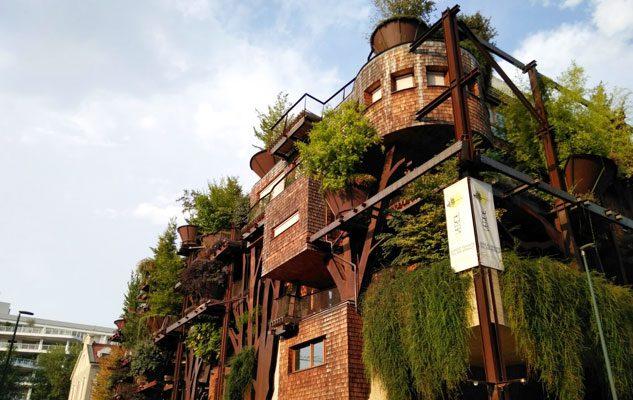 """Il """"25 Verde"""" di Torino,  la prima foresta abitabile d'Italia"""