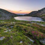 Il Parco Orsiera-Rocciavrè, un paradiso naturale ricco di storia e bellezza