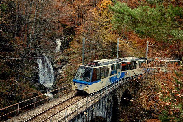 treno-foliage-vigezzina_4