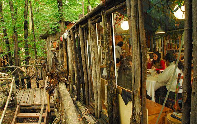 Il villaggio di case sugli alberi in Piemonte: un luogo segreto tra sogno e realtà