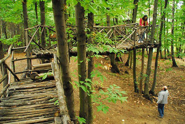 villaggio-case-alberi-piemonte_3