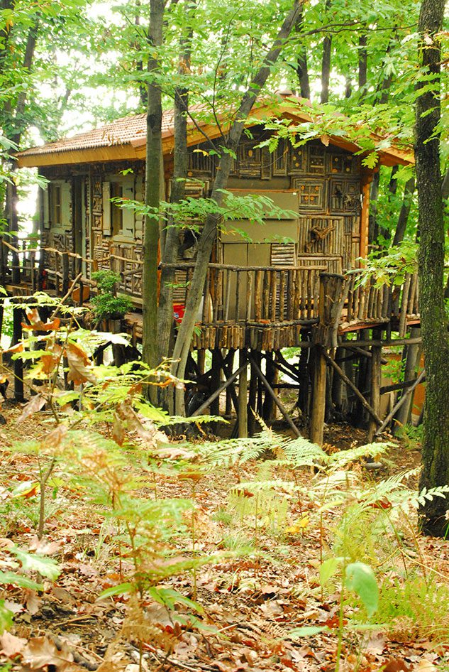 villaggio-case-alberi-piemonte_5