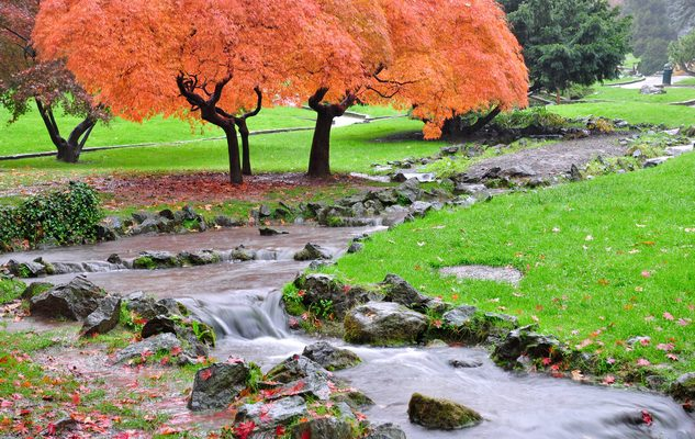 foto-torino-autunno-10