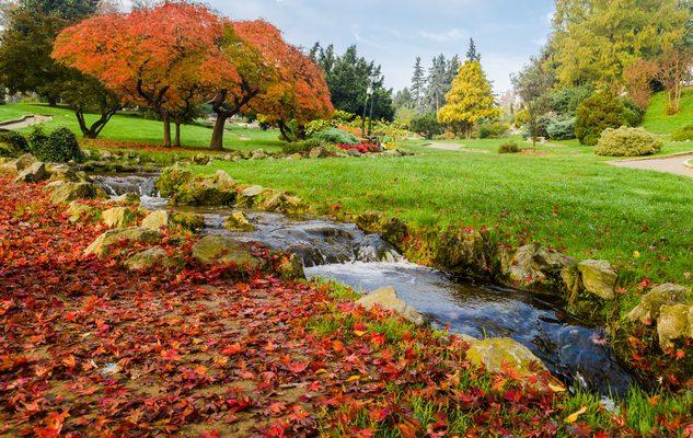 foto-torino-autunno-2