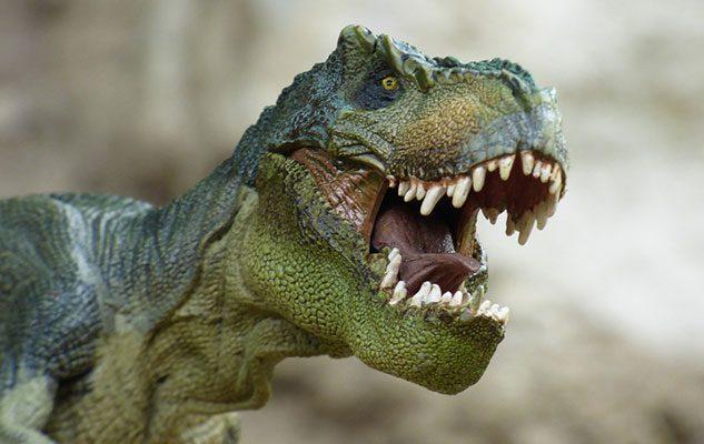 Dino Live – la mostra di dinosauri animatronici