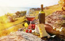 Salone del vino alla Palazzina di Caccia di Stupinigi