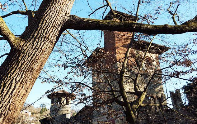 Riapertura del Giardino Medievale – Ingresso a 1 €