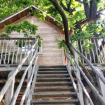 I 4 hotel sugli alberi in Piemonte: dormire a qualche metro da terra tra natura, stelle e magia