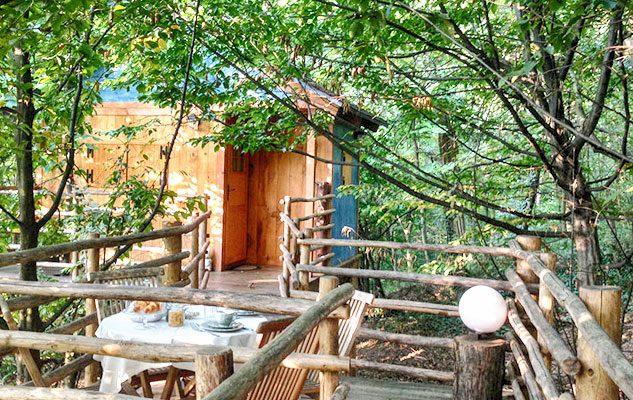 I 4 hotel sugli alberi in piemonte dormire a qualche - Il giardino dei semplici manta ...