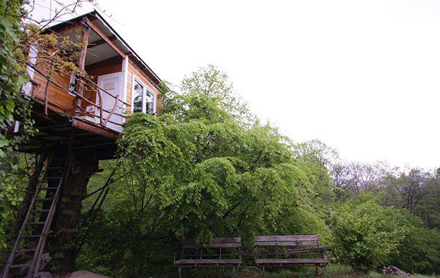 I 4 hotel sugli alberi in piemonte dormire a qualche for Case in legno sugli alberi