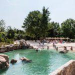 Malawi Beach: un bagno tra ippopotami e pesci tropicali nella piscina alle porte di Torino
