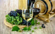 Portici Divini 2017: degustazioni gratuite guidate di vini torinesi