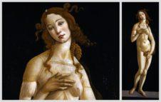 La Venere di Botticelli ai Musei Reali di Torino - Ultimi giorni