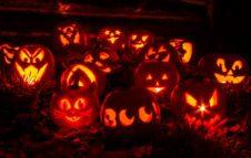 Piccoli (grandi) brividi: viva Halloween!