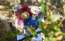 Pasqua e Pasquetta al Parco del Castello di Miradolo: picnic e una caccia al tesoro