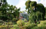 L'Orto Botanico di Torino: piante e fiori da tutto il mondo