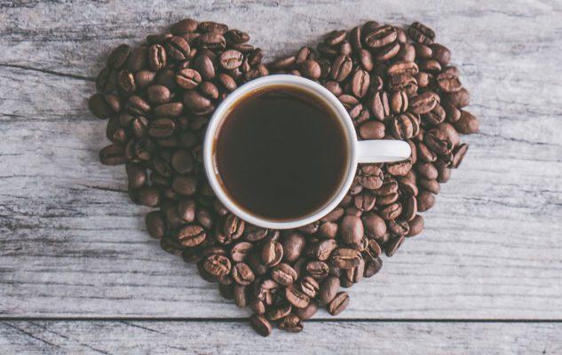 Turin Coffee – Festival del Caffè di Torino 2018