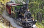 Ferrovia del Tanaro: i treni storici ripartono da Torino Porta Nuova