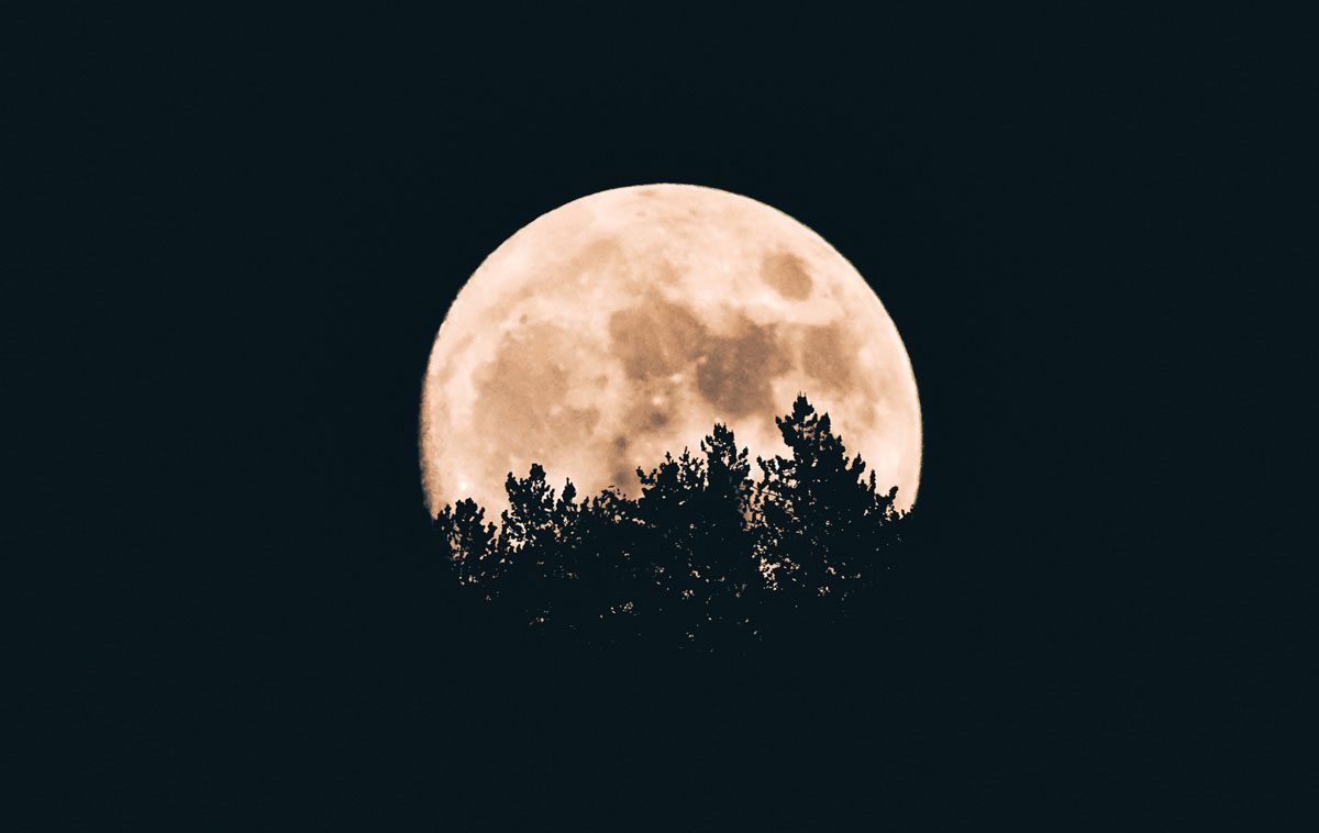 """Guarda che lune!"": evento speciale al Planetario per l'International Observe The Moon Night 2018"