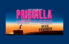"""""""Priscilla La Regina del Deserto - Il Musical"""" a Torino nel 2019: date e biglietti"""