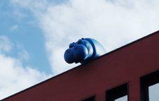 Pippo, il curioso ippopotamo blu che guarda Torino dall'alto