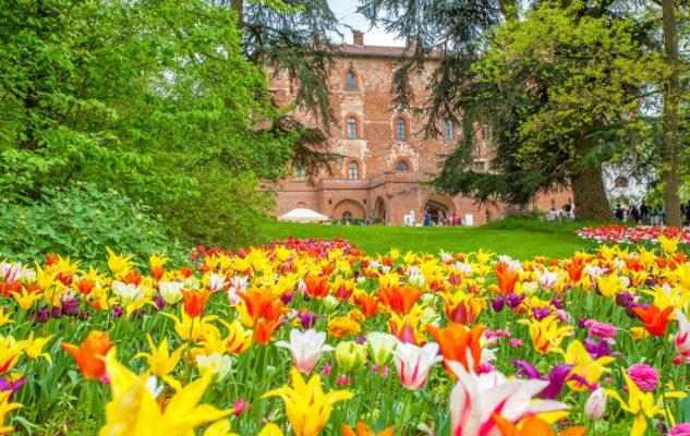 Messer Tulipano 2019 al Castello di Pralormo