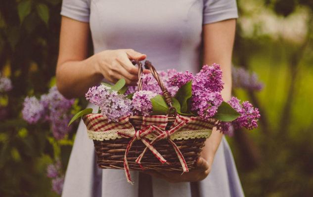 Flor Autunno 2019: Torino si trasforma in un grande giardino