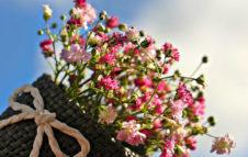 Follia in Fiore 2019: alla Certosa di Collegno sboccia la primavera