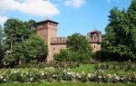 """I """"Punti Verdi"""" ritornano a Torino per l'Estate 2019"""