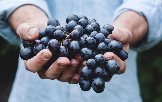 Fiera del Rapulé 2019: piatti tipici e buon vino nelle antiche cantine scavate nel tufo