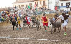 Il Palio degli Asini di Cocconato 2019: corsa, sfilata e una cena medievale