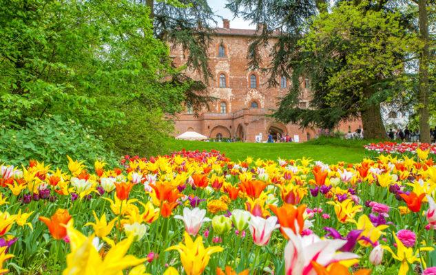 Messer Tulipano 2020 al Castello di Pralormo