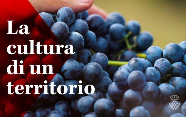 Portici Divini 2019 a Torino: 10 giorni di eventi e degustazioni a Torino