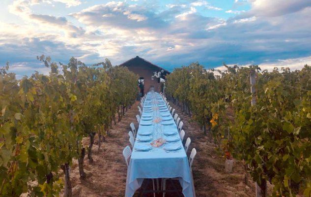 La Luna e il Ciabot: cena e musica tra le vigne sotto la luna del Roero