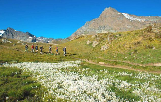Parco Nazionale Gran Paradiso: al via le Escursioni Gratuite con le guide del Parco