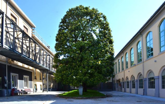 Museo Scrittura Torino