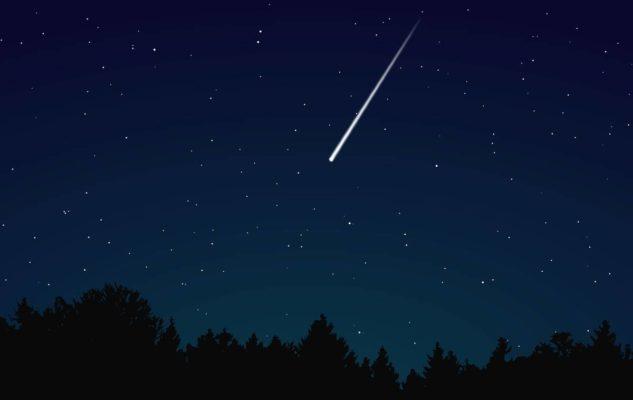 Sotto le stelle cadenti: trekking notturno nel Parco Naturale La Mandria per ammirare le Perseidi