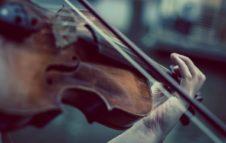 Back To Bach 2020: il festival di musica barocca torna a Torino
