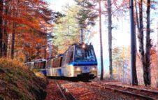 Il Treno del Foliage 2020: alla scoperta delle sfumature dell'autunno