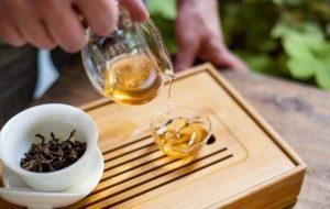 Camellia – Il Tempo del Tè a Torino: tè pregiati dal mondo e magiche atmosfere