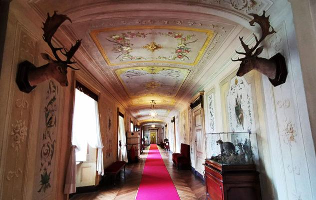 Castello Mandria interno