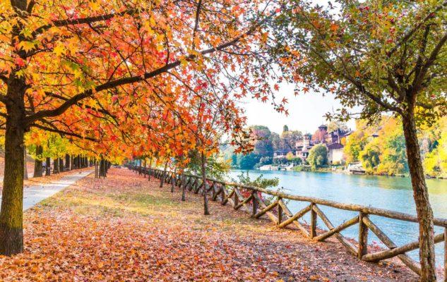 Foliage Parco Valentino Torino