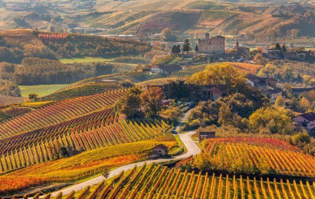 Foliage Piemonte Langhe