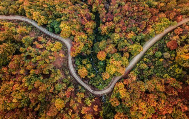 Oasi Zegna autunno passeggiate