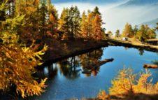 Parco naturale del Gran Bosco Salbertrand