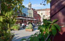 Terra Madre - Salone del Gusto 2020: cene e degustazioni da Eataly Lingotto