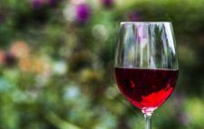 Torino wine week 2020